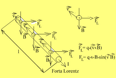 forta.Lorentz